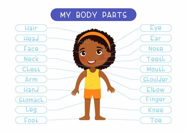 Moje części ciała ilustracja plakat edukacyjny infografika dla dzieci
