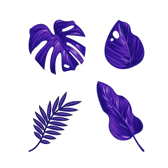 Monochromatyczne opakowanie z tropikalnych liści