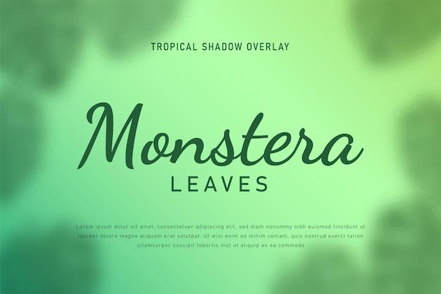 Monstera pozostawia cień nakładki tło wektor ilustracja