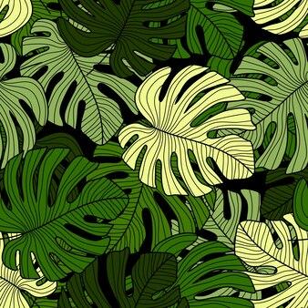 Monstera zieleń opuszcza bezszwowego wzór na czarnym tle.