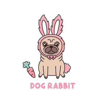 Mops pies-królik