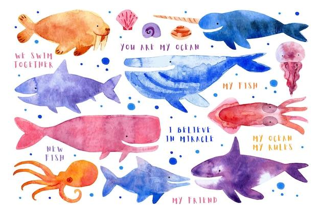 Morskie podwodne stworzenia zwierzęta ryby rekin wielorybi mors narwal meduza ośmiornica zabójca wieloryb kałamarnica akwarela ilustracja