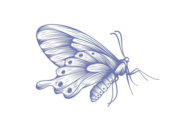 Motyl ikona symbol wektor ilustracja
