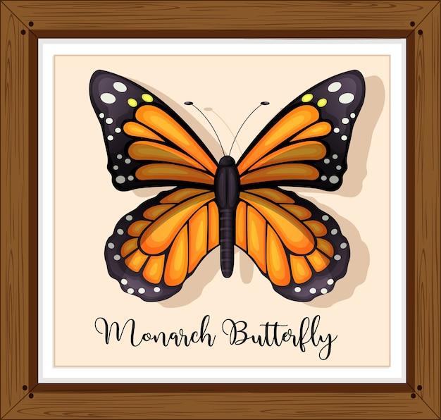 Motyl na drewnianej ramie