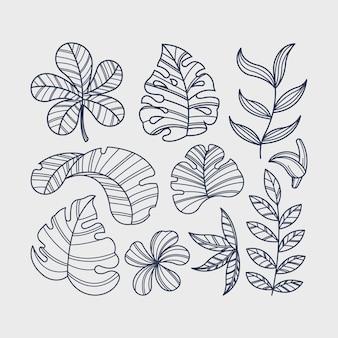 Motyw kolekcji kwiatów tropikalnych i liści
