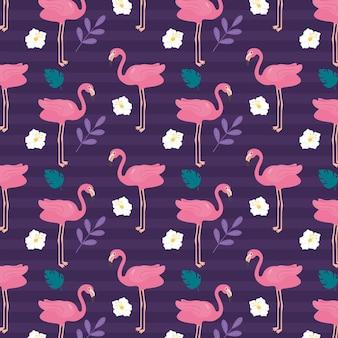 Motyw kolekcji wzorów flamingów