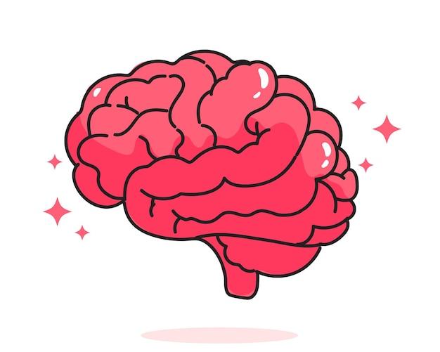 Mózg anatomia człowieka biologia narządów ciała system opieki zdrowotnej i medyczna ręcznie rysowane ilustracja kreskówka ilustracja
