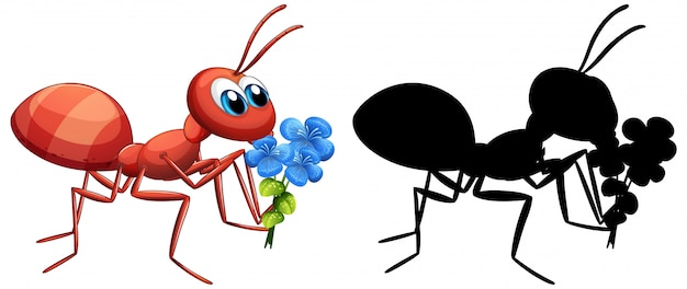 Mrówka trzyma zestaw kwiatów