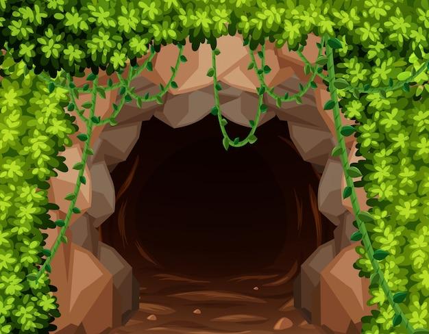 Mystery mine cave w przyrodzie
