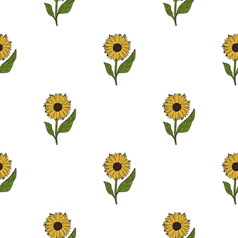 Na białym tle bezszwowe botaniczny wzór z prostym żółtym słonecznikiem