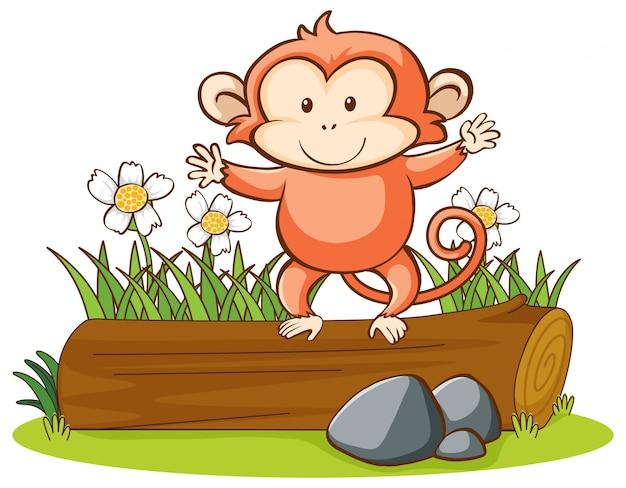 Na białym tle cute małpy