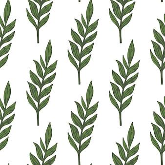 Na białym tle minimalistyczny botaniczny wzór z gałęzi zielonych liści. proste sylwetki liści.