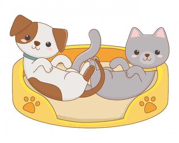 Na białym tle projekt kreskówka kot i pies