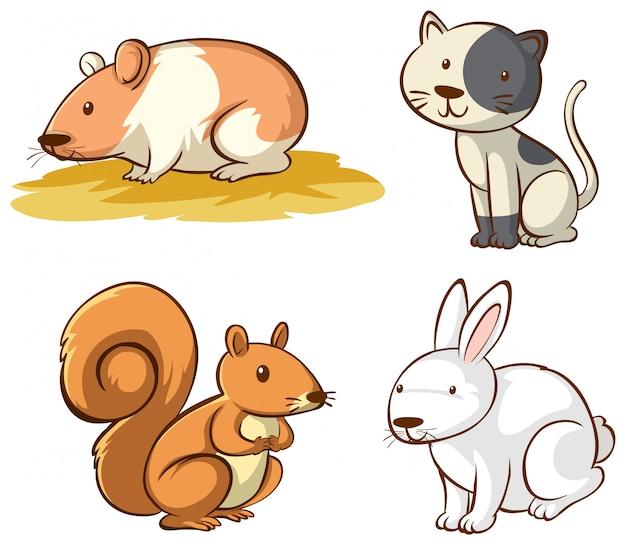 Na białym tle uroczych zwierzątek