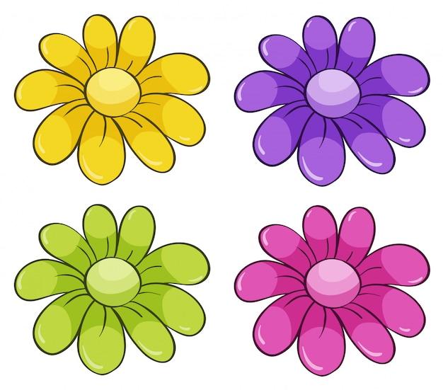 Na białym tle zestaw kwiatów