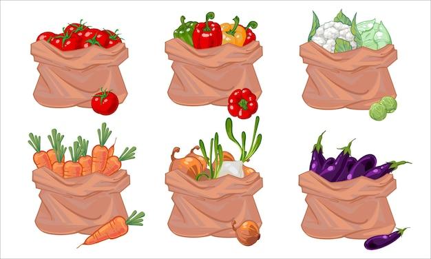 Na białym tle zestaw worków w różnych warzywach.