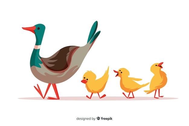 Na zewnątrz płaska kaczka i kaczuszki matki