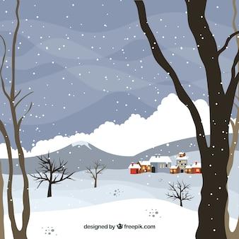 Nagie drzewa zimowe tło