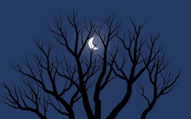 Nagie drzewo i nocny krajobraz w świetle księżyca