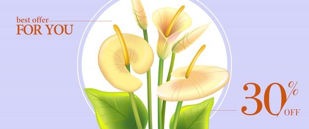 Najlepsza oferta dla ciebie, trzydzieści procent off banner z białych lilii calla