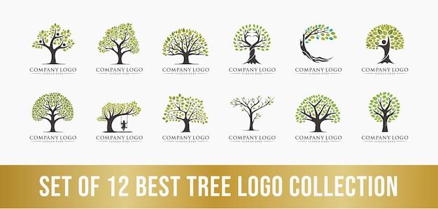 Najlepszy zestaw kolekcji logo drzewa idealny dla logo firmy biznesowej