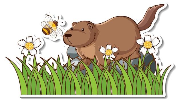 Naklejka śliczna wydra stojąca w polu trawy