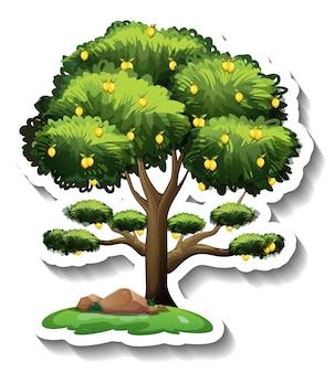 Naklejka z drzewem cytrynowym na białym tle