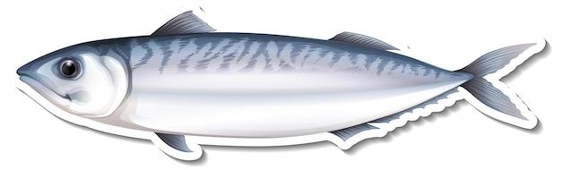 Naklejka z rybą morską makreli