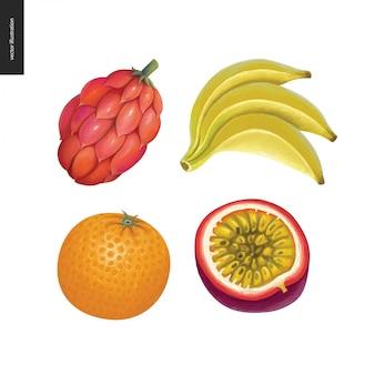 Naklejki wektorowe owoców