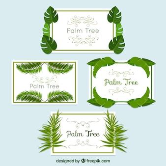 Naklejki z ramkami zestaw liści palmowych