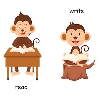 Naprzeciwko czytaj i pisz ilustrację