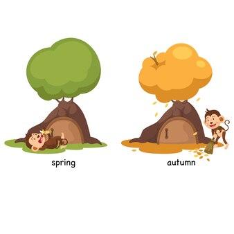 Naprzeciwko wiosny i jesieni na białym tle