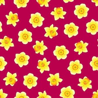Narcyz kwiat na różowym tle