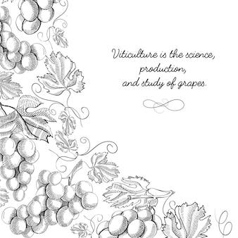 Narożna rama winieta przewiń ornament doodle winogrono foliowane obramowanie ręcznie rysowane szkic ilustracji