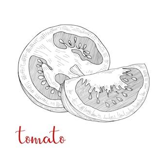 Naszkicuj pomidory. pomidory na białym tle.