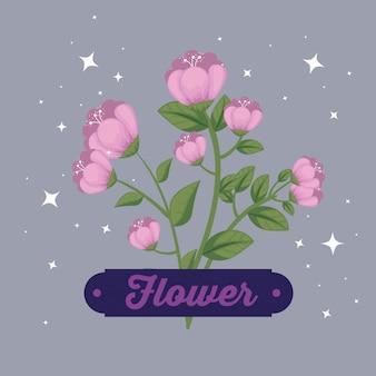 Natura kwitnie rośliny z płatkami i emblematem