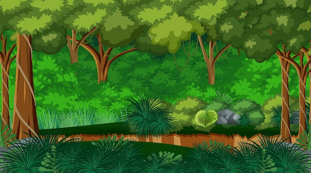 Natura las krajobraz tło