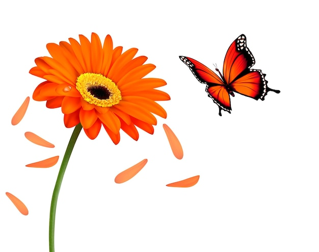 Natura lato pomarańczowy kwiat z motylem. ilustracja wektorowa.
