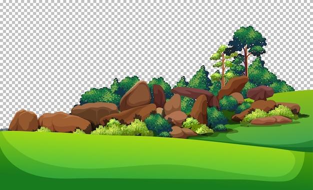 Natura na zewnątrz krajobraz przezroczysty
