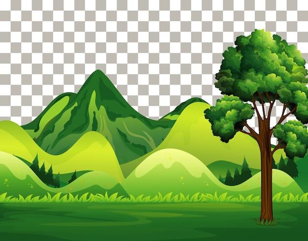 Natura na zewnątrz krajobraz