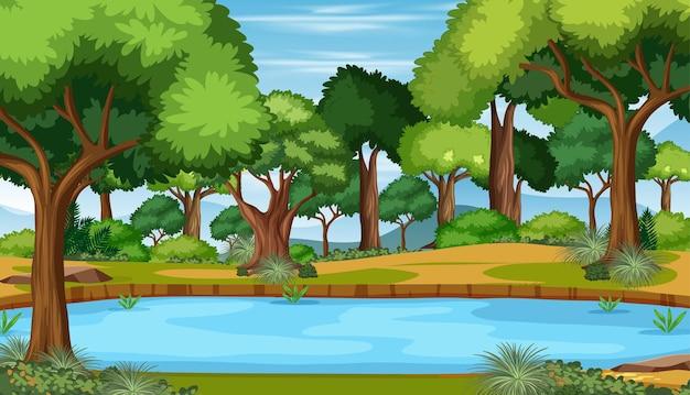 Natura na zewnątrz lasu tło
