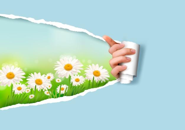 Natura tło z kwiatami i zgrywanie papieru