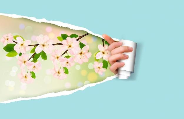 Natura tło z zieloną trawą i niebem i zgrywanie papieru.