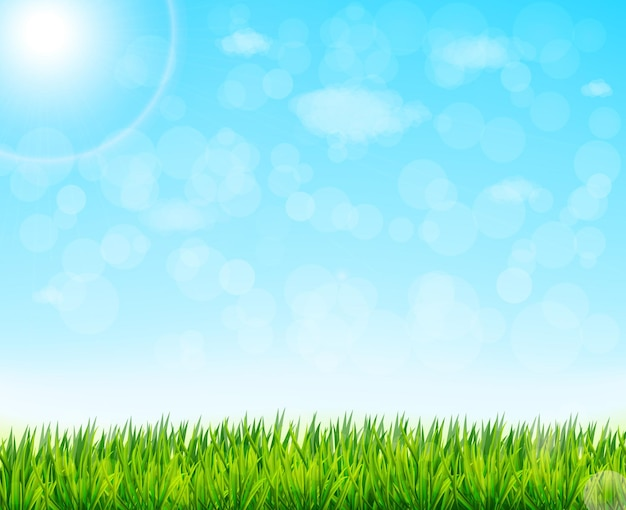 Natura tło z zieloną trawą i niebieskim niebem