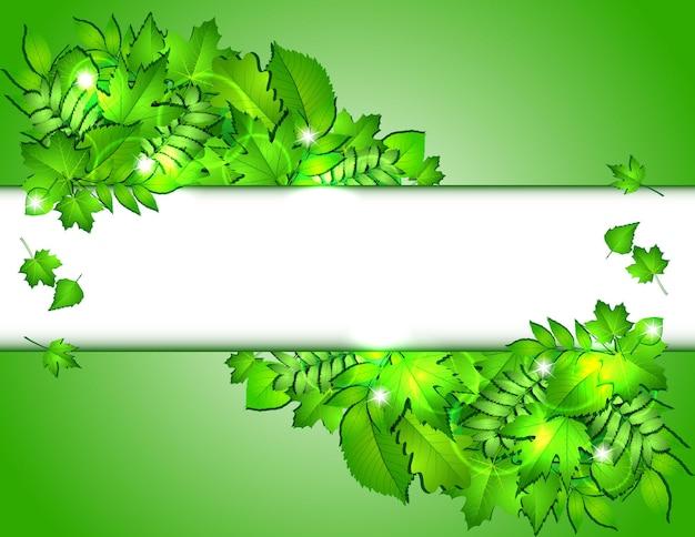 Natura tło z zielonymi świeżymi liśćmi. ilustracja wektorowa
