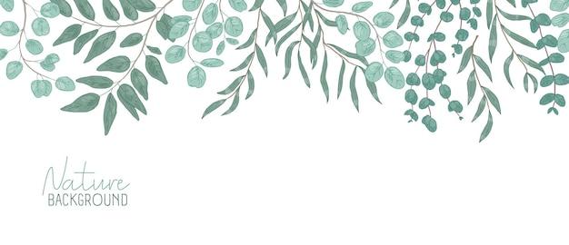 Natura wektor realistyczne tło. tło liści z miejscem na tekst. kompozycja botaniczna, gałązki krzewów o zielonych liściach. ulistnienie naturalne, pióropusz. ilustracja kwiatowy.