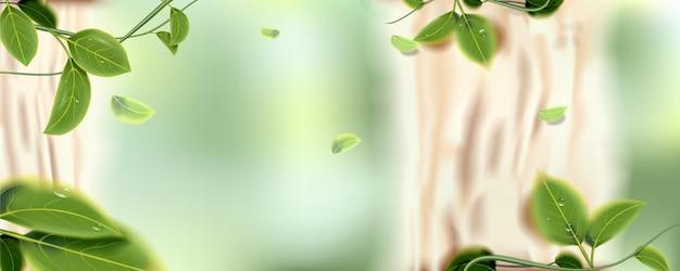 Naturalne liście na zielonym tle bokeh