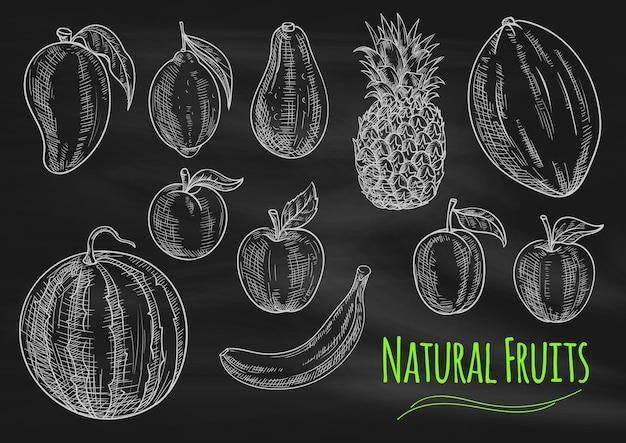 Naturalne owoce kredą szkic na tablicy