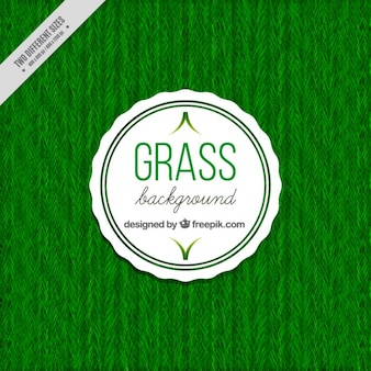 Naturalne tło trawa
