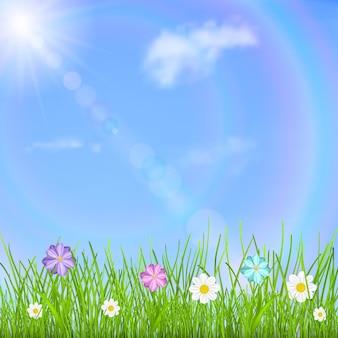Naturalne tło z niebieskim niebem, słońcem, chmurami, tęczą, zieloną trawą i wielokolorowymi kwiatami